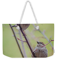 Weekender Tote Bag featuring the photograph Conversation Of The Day by Steven Santamour