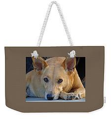Cookie Chillin'  Weekender Tote Bag
