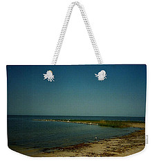 Weekender Tote Bag featuring the photograph Cool Day For A Swim by Amazing Photographs AKA Christian Wilson