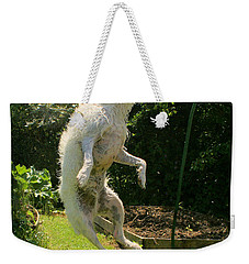 Cool Dog Weekender Tote Bag
