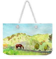 Weekender Tote Bag featuring the painting Cool Drink by C Sitton