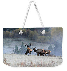 Cool Misty Morning Weekender Tote Bag