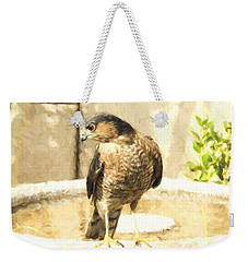 Cooper's Hawk At The Birdbath Weekender Tote Bag