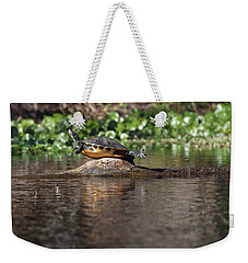 Weekender Tote Bag featuring the photograph Cooter On Alligator Log by Paul Rebmann