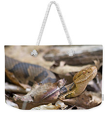 Copperhead In The Wild Weekender Tote Bag by Betsy Knapp