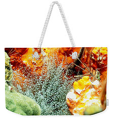Corkscrew Anemone Grove Weekender Tote Bag by Amy McDaniel