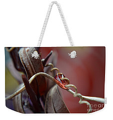 Weekender Tote Bag featuring the photograph Corkscrew by Michelle Meenawong