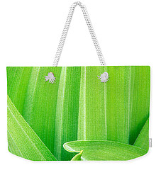 Weekender Tote Bag featuring the photograph Corn Lily Leaf Detail Yosemite Np California by Dave Welling