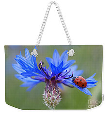 Weekender Tote Bag featuring the photograph Cornflower Ladybug Siebenpunkt Blue Red Flower by Paul Fearn