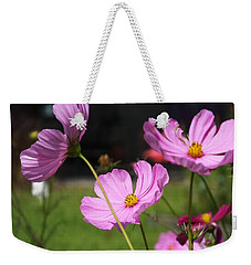 Cosmos In Magenta Weekender Tote Bag