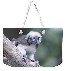 Cotton Top Tamarin  Weekender Tote Bag