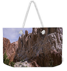 Cottonwood Spires 2-v Weekender Tote Bag