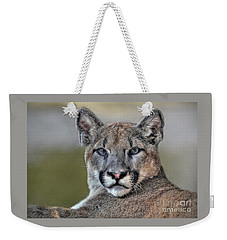 Weekender Tote Bag featuring the photograph Cougar  by Savannah Gibbs