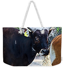 Court Out Weekender Tote Bag
