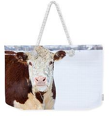 Cow - Fine Art Photography Print Weekender Tote Bag