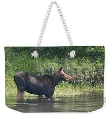 Cow Moose Breakfast Weekender Tote Bag