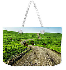 Cows On The Road Weekender Tote Bag