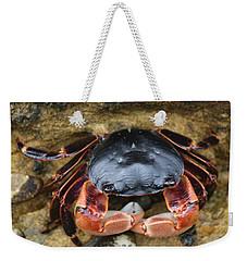 Crabby Pants  Weekender Tote Bag