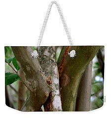 Weekender Tote Bag featuring the photograph Crape Myrtle Branches by Peter Piatt