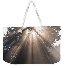 Crepuscular Rays Coming Through Tree In Fog At Sunrise Weekender Tote Bag