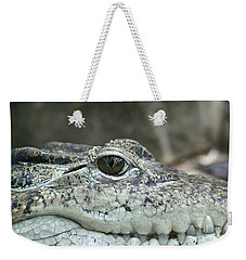 Weekender Tote Bag featuring the photograph Crocodile Animal Eye Alligator Reptile Hunter by Paul Fearn