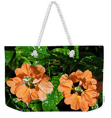 Weekender Tote Bag featuring the photograph Crossandra by Ron Davidson