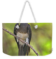 Crowned Hornbill Perching On A Branch Weekender Tote Bag