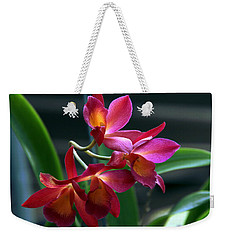 Ctna New River Orchid Weekender Tote Bag by Greg Allore