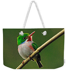 Cuban Tody Weekender Tote Bag by Tony Beck