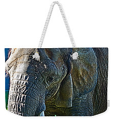 Cuddles In Search Weekender Tote Bag by Miroslava Jurcik