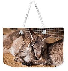 Cuddling Kangaroos Weekender Tote Bag