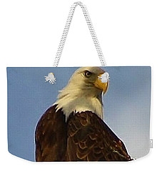 Curious Bald Eagle Weekender Tote Bag by Bruce Bley