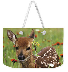 Curious Fawn Weekender Tote Bag by Chris Scroggins