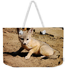 Curious Kit Fox Weekender Tote Bag
