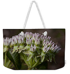 Weekender Tote Bag featuring the photograph Curtiss' Milkweed #3 by Paul Rebmann