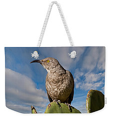 Curve-billed Thrasher On A Prickly Pear Cactus Weekender Tote Bag