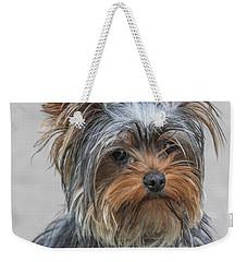 Cute Yorky Portrait Weekender Tote Bag