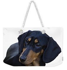 Dachshund Weekender Tote Bag by Linsey Williams