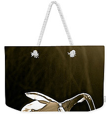 Weekender Tote Bag featuring the photograph Daffodils 2 by Pamela Cooper