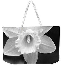 Daffodils - Infrared 10 Weekender Tote Bag by Pamela Critchlow