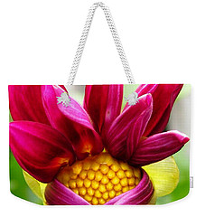 Weekender Tote Bag featuring the photograph Dahlia From The Showpiece Mix by J McCombie
