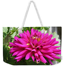 Weekender Tote Bag featuring the photograph Dahlia Named Andreas Dahl by J McCombie