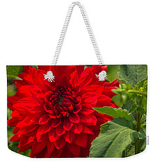 Dahlia Perfection Weekender Tote Bag by Jane Luxton