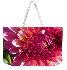 Weekender Tote Bag featuring the photograph Dahlia Pink 1 by Susan Garren