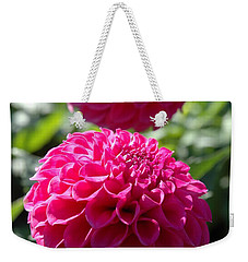 Weekender Tote Bag featuring the photograph Dahlia Xi by Christiane Hellner-OBrien