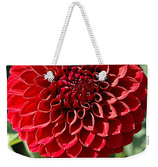 Weekender Tote Bag featuring the photograph Dahlia Xii by Christiane Hellner-OBrien
