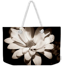 Weekender Tote Bag featuring the photograph Daisy by Debra Forand