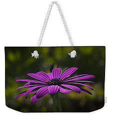Daisy Weekender Tote Bag