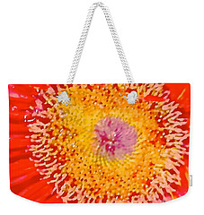 Weekender Tote Bag featuring the photograph Daisy Mae by Dee Dee  Whittle