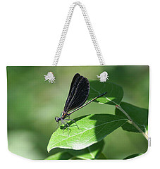 Weekender Tote Bag featuring the photograph Damselfly  by Karen Silvestri